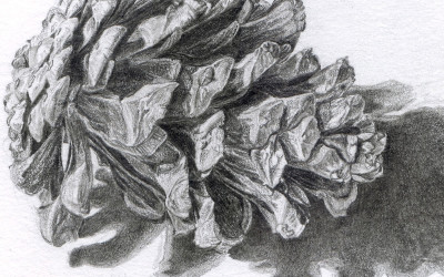 detail of previous drawing
